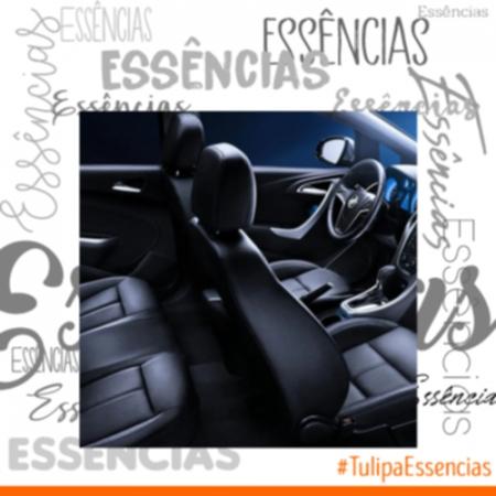 ESSENCIA CARRO PERFUMADO FRESH 10957 100ML